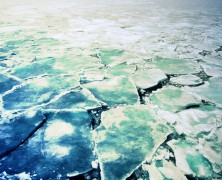 Arctic Sea Ice at New Low